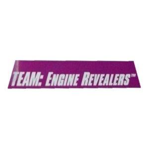 Team: Engine Revealers