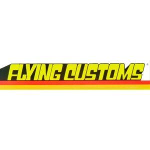 Hot Wheels Flying Customs