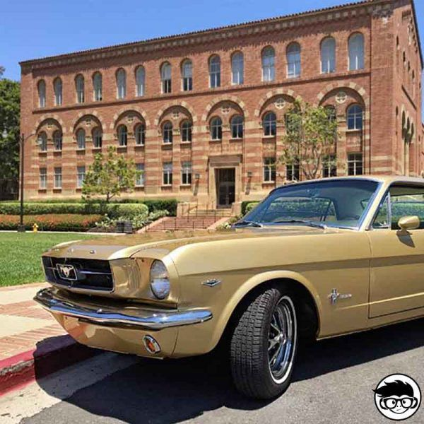hot-wheels-gold-65-mustang