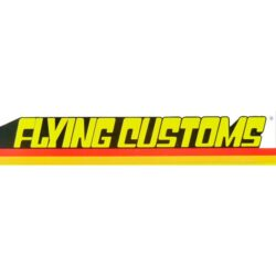 Hot Wheels Flying Customs