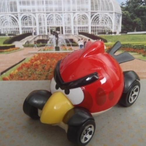Hot Wheels Red Bird Hw imagination 47/247 2013 long card